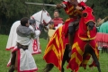 spectacle-chevaliers-19