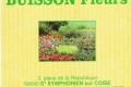 1_buisson-fleurs